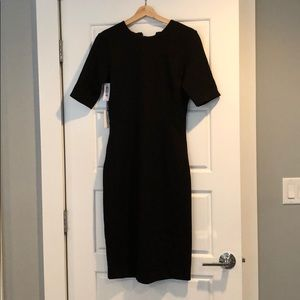 Babaton BRAND NEW Kramer Dress